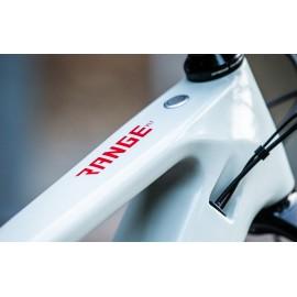 Norco Range VLT 1 E Bike 2020 Carbon Komplettbike