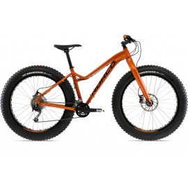 Fat Bikes