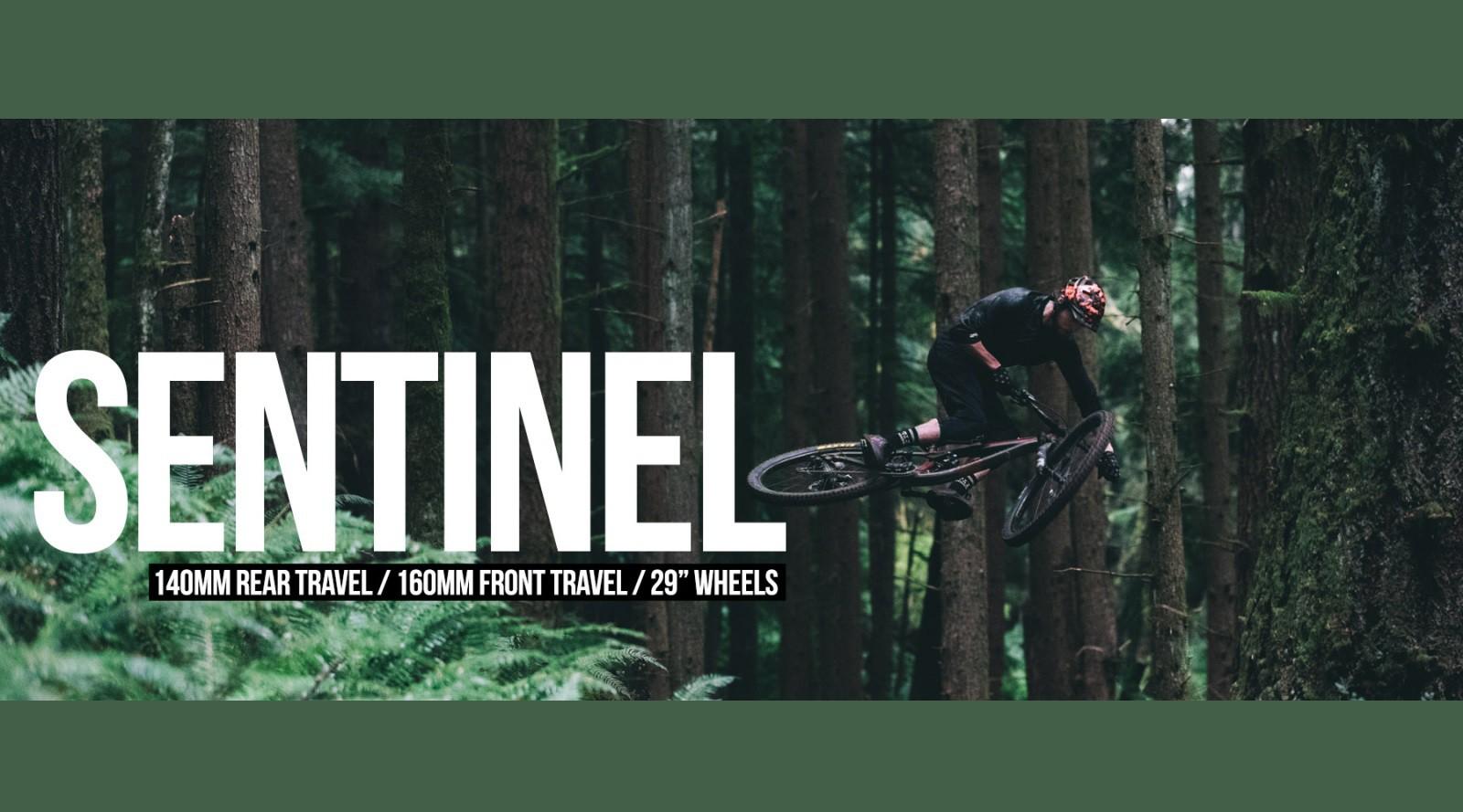 Transition Sentinel Rahmen 2019 Special: 20% Rabatt